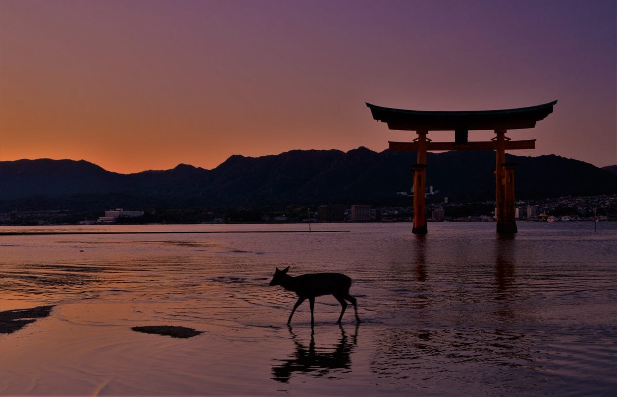 My 25 Favorite Experiences to Inspire Your Best Japan Itinerary