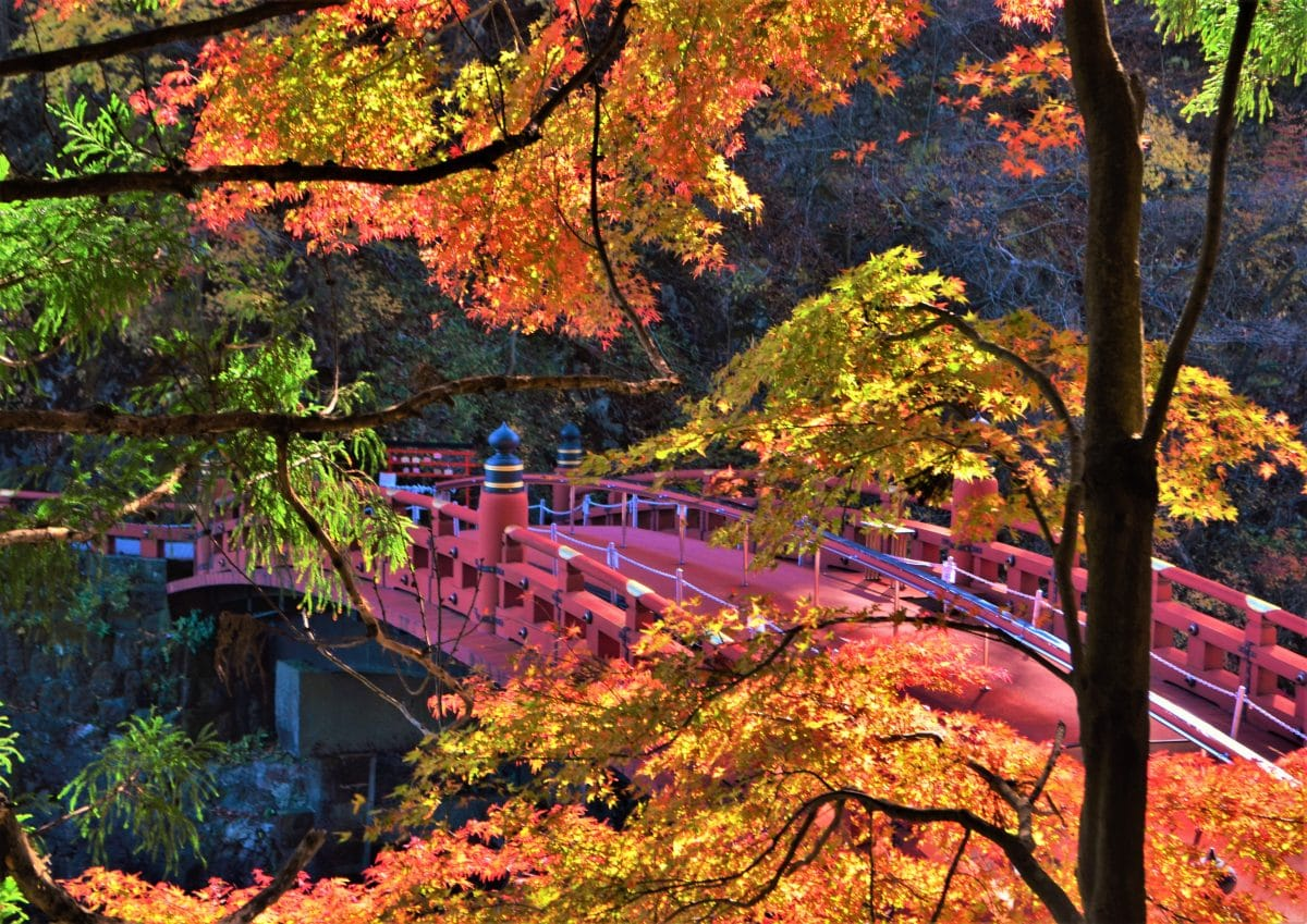 A Nikko Day Trip From Tokyo – Taking a Tour Versus Independent Travel