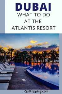 Discover all there is to see and do at the Palm Atlantis