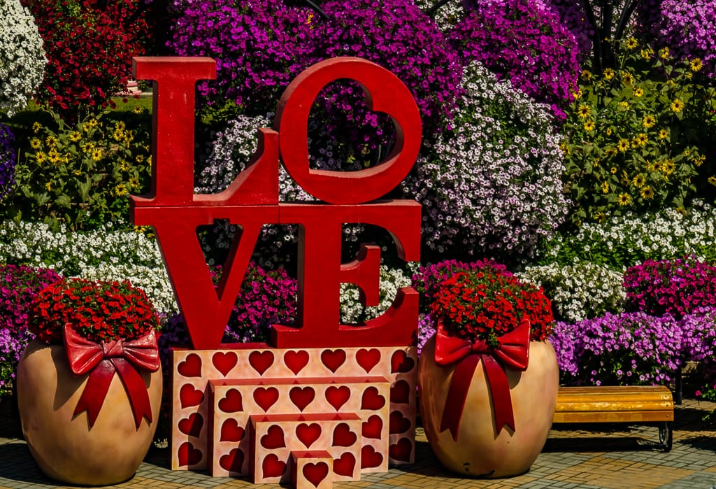 Feeling the Blooming Love in a Miracle Garden Dubai Oasis