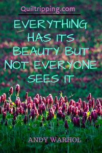 Everything has beauty but not everyone sees it #redclover #andywarholquote #tualatinvalley