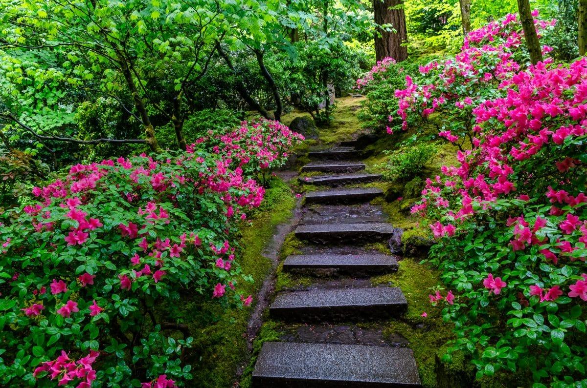 A Spring Day in My Favorite Portland Gardens