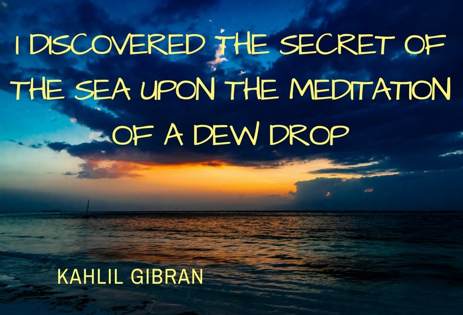 I discovered the secret of the sea upon the meditation of a dew drop