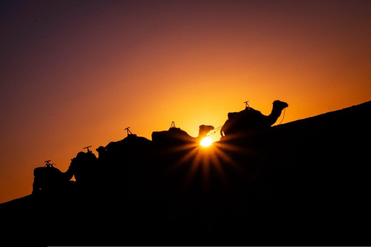 PhotoPOSTcard: A Sahara Desert Sunset