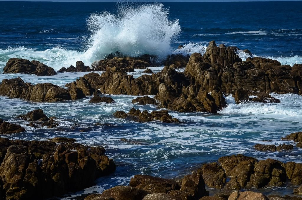 A typical Pacific coast view alon the 17-mile drive.