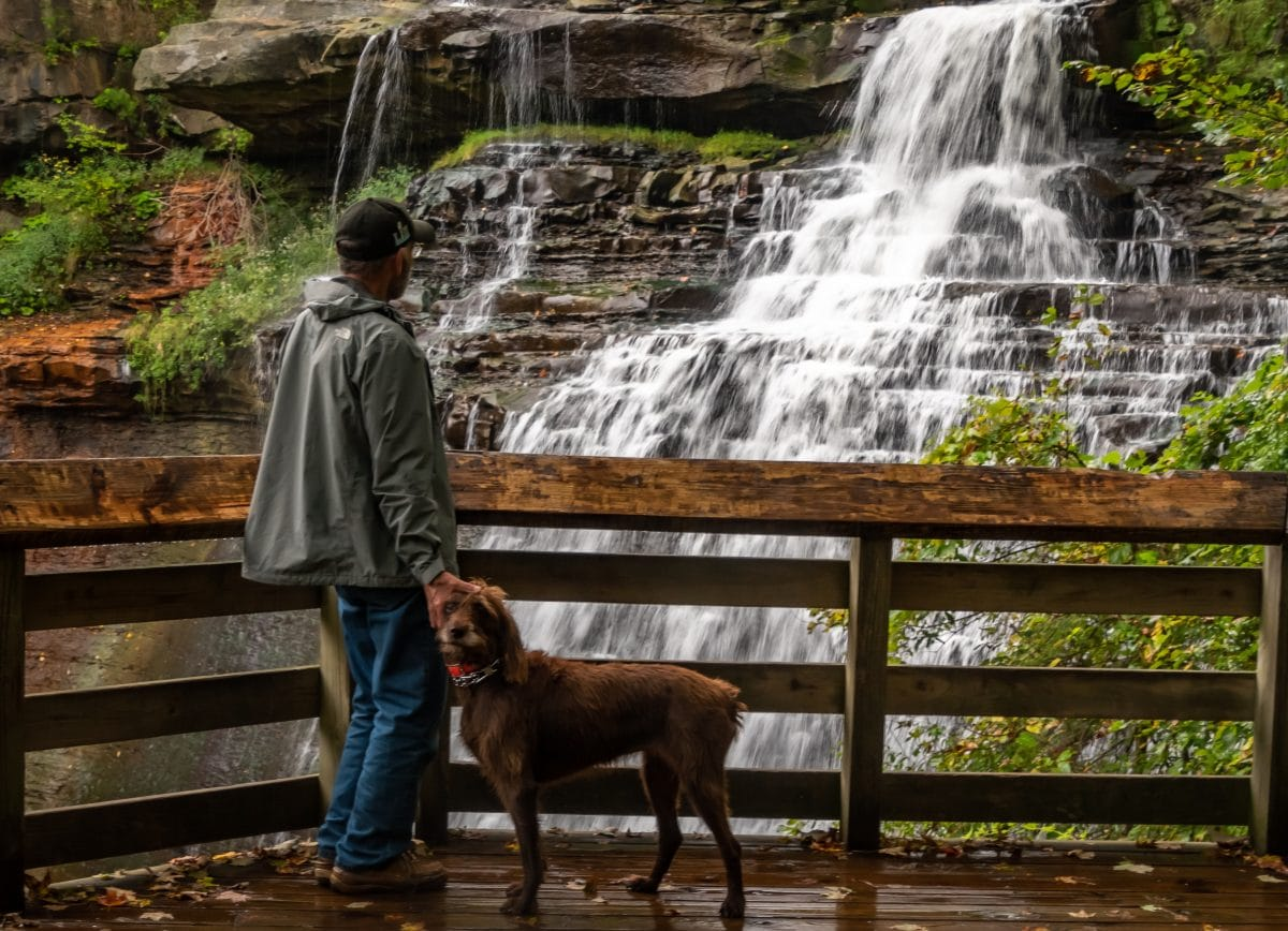 A Day Trip From Cleveland: Cuyahoga Valley National Park and Other Local Sights