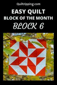 Sharing block 6 of my block of the month program