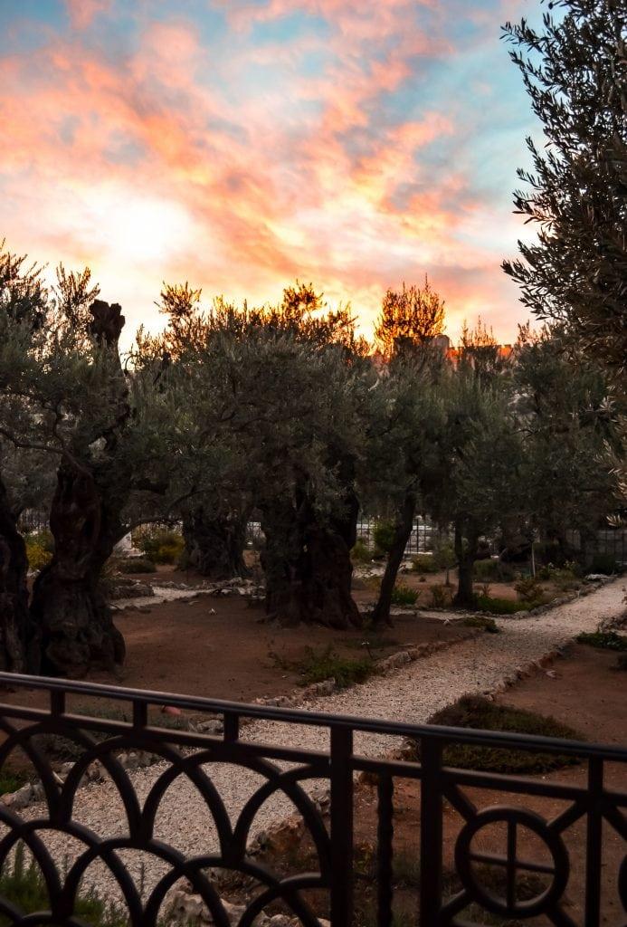 Watching the sun set over the Garden of Gethsemane
