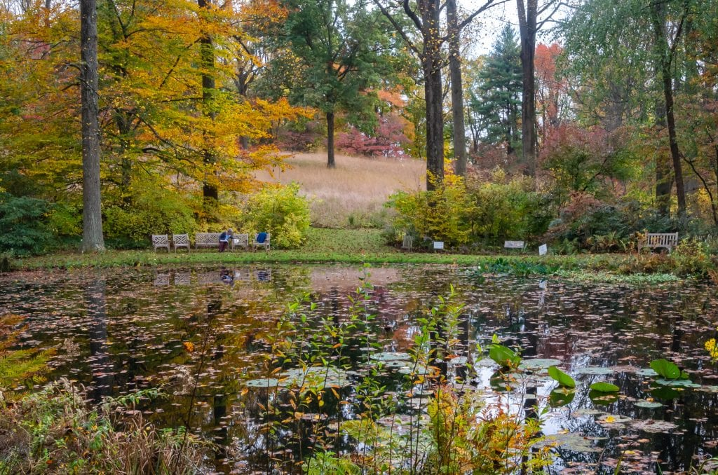 The gardens at Mt. Cuba in the fall
